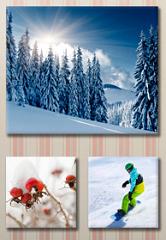 Photo Canvas Discounts