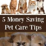 5 Money Saving Pet Care Tips