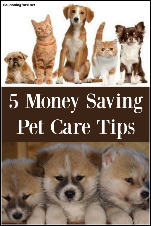 5 Money Saving Pet Care Tips