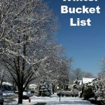 Illinois Winter Bucket List – Things To Do In The Winter